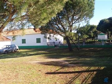 Country Estate T4 / Coruche, Couço