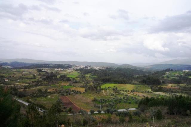Farm / Miranda do Corvo, Miranda do Corvo