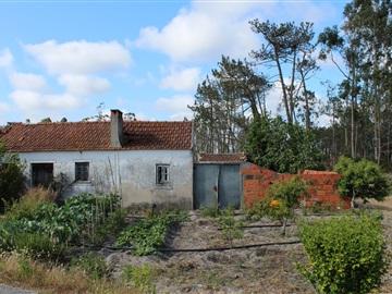 House / Leiria, Coimbrão
