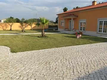 House T3 / Caldas da Rainha, Fanadia
