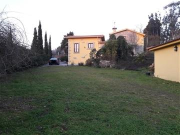 House T4 / Póvoa de Lanhoso, Fonte Arcada e Oliveira
