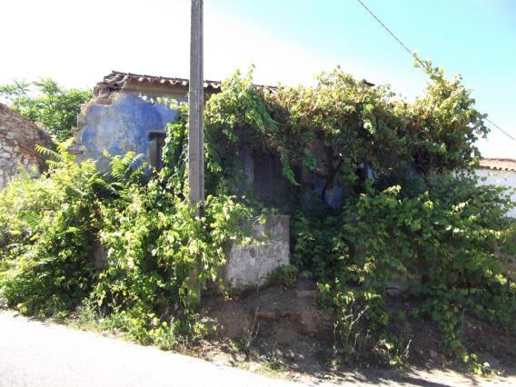 House / Tomar, Asseiceira