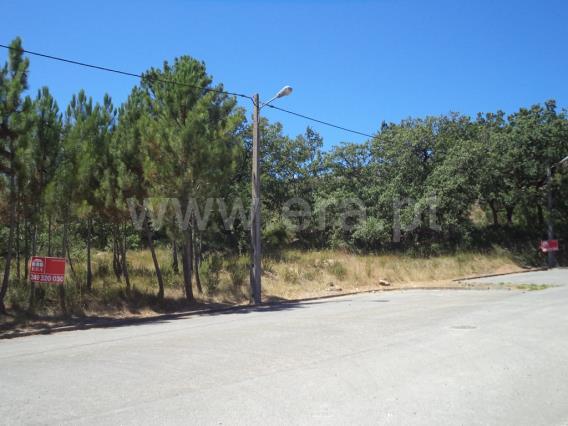 Lote / Alvaiázere, 6001-ALVAIAZERE