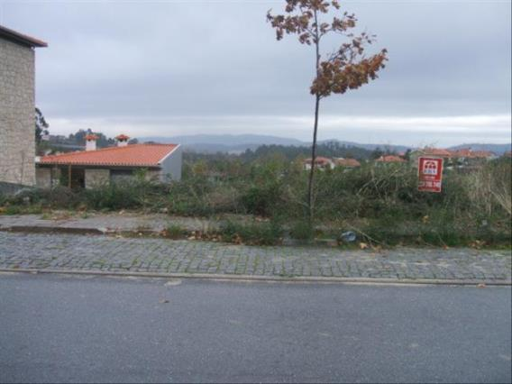 Lote / Fafe, Quinchães