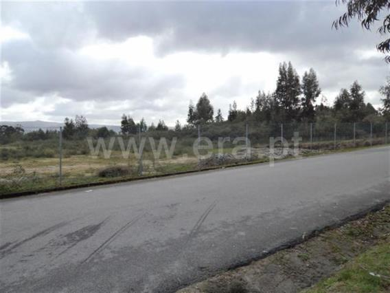 Lote Industrial / Fafe, Fafe