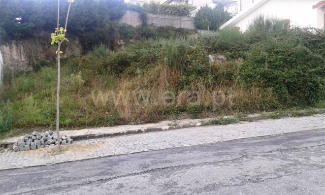Lote / Paredes, Vilela