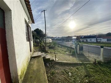 Maison T1 / Rio Maior, Asseiceira