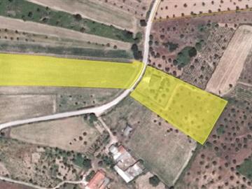 Moradia T4 / Tomar, 1117-SAO PEDRO