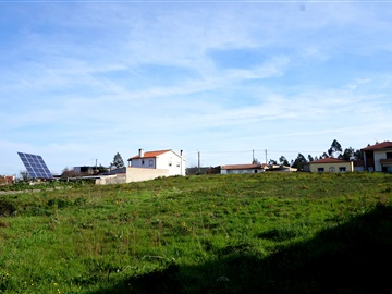 Plot / Barcelos, Lijó