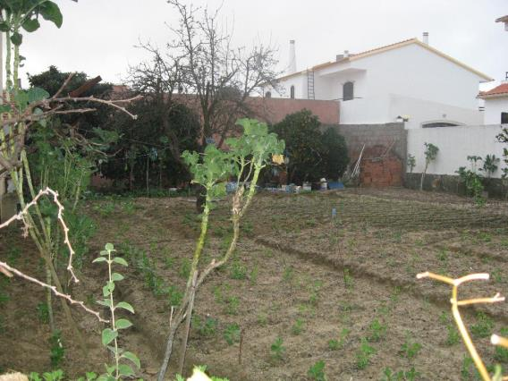 Plot / Barreiro, Palhais / Quinta do Hortinha