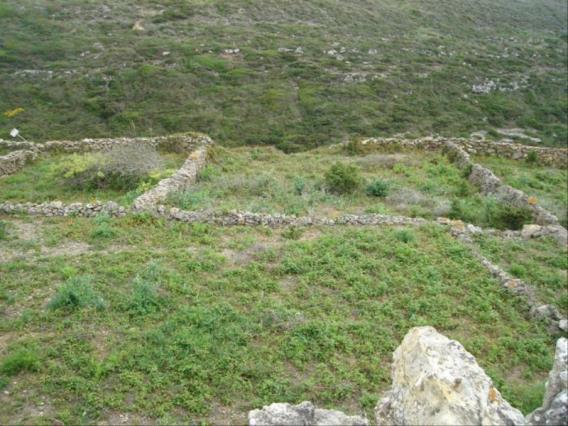 Plot / Sintra, Assafora