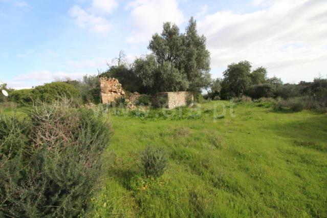 Plot with ruin / Faro, Santa Barbara de Nexe