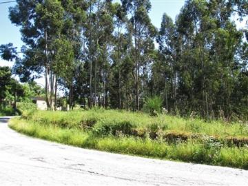 Terrain à bâtir / Ponte de Lima, Vitorino dos Piães