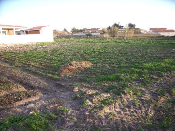 Terrain à bâtir / Sintra, Assafora