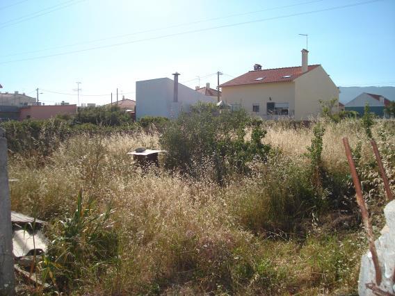 Terrain / Sintra, Abrunheira Albarraque
