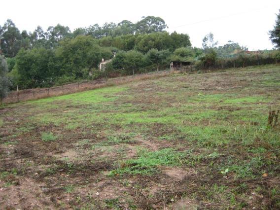 Terreno / Águeda, Trofa, Segadães e Lamas do Vouga