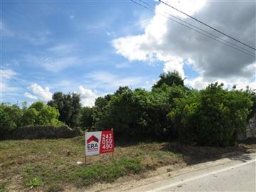 Terreno com ruina / Rio Maior, São João da Ribeira e Ribeira de São João