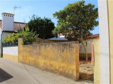 Terreno com ruina / Tomar, 1114-ASSEICEIRA