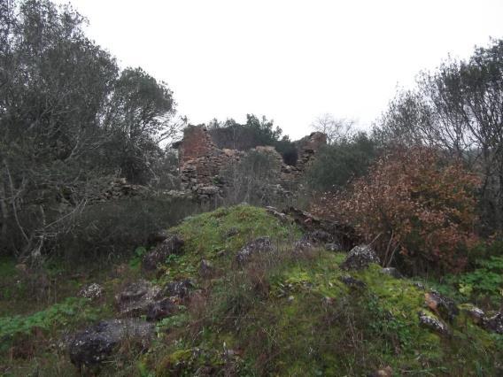 Terreno com ruina / Tomar, Além da Ribeira e Pedreira