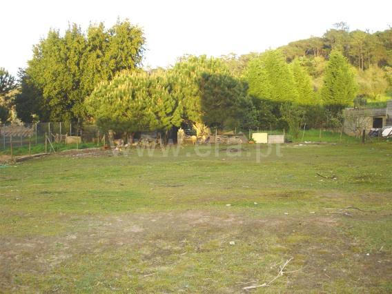 Terreno / Leiria, Parceiros e Azoia
