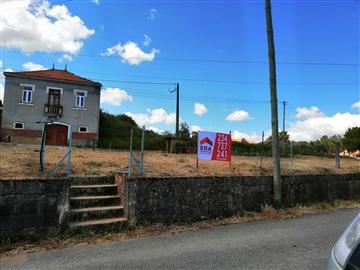 Terreno / Oliveira do Bairro, Oliveira do Bairro