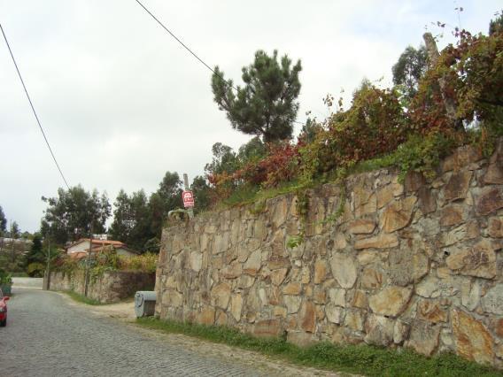 Terreno Para Construção / Barcelos, Carreira e Fonte Coberta