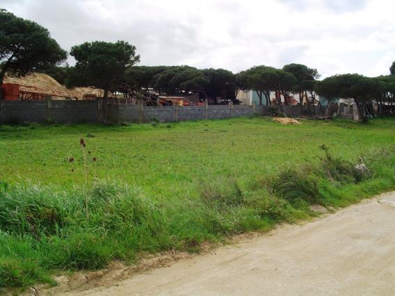 Terreno Para Construção / Sintra, Fachada