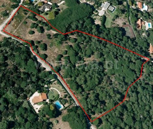 Terreno Para Construção / Sintra, Praia Grande