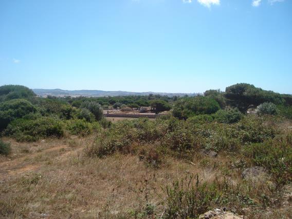 Terreno Para Construção / Sintra, Várzea de Sintra