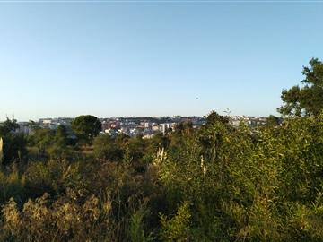 Terreno Para Construcción / Coimbra, Pinhal Marrocos