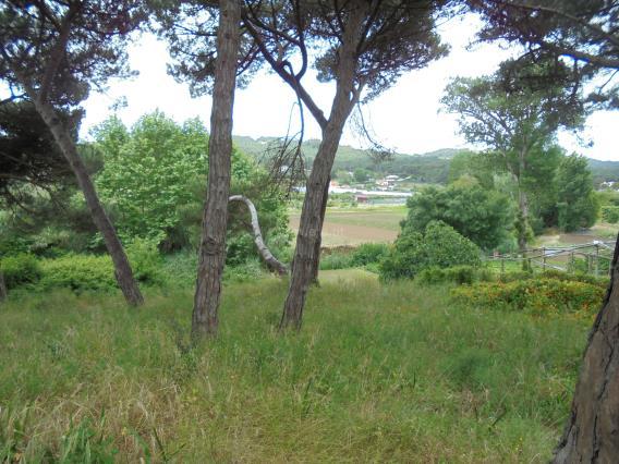 Terreno Para Construcción / Sintra, Colares