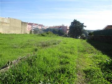 Terreno Para Construcción / Sintra, Lourel