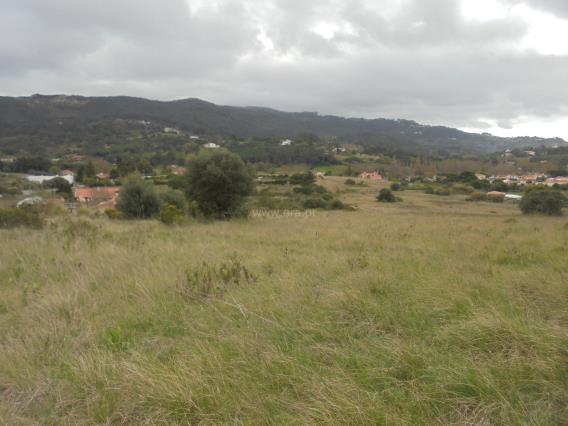 Terreno / Sintra, Galamares