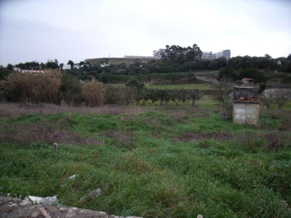 Terreno / Sintra, Lourel