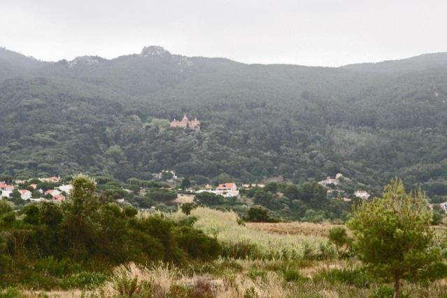 Terreno / Sintra, Nafarros