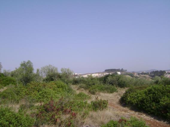 Terreno / Sintra, Terrugem