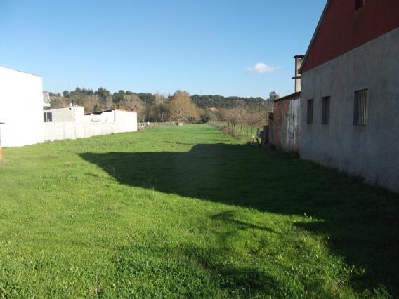 Terreno / Tomar, 1002-TOMAR