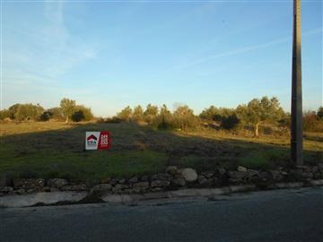 Terreno / Tomar, 1121-CARREGUEIROS
