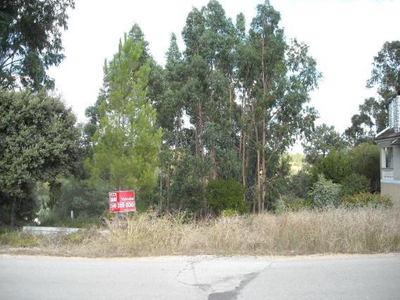 Terreno / Tomar, 1122-SABACHEIRA