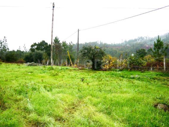 Terreno Urbano / Vila Nova de Poiares, Poiares